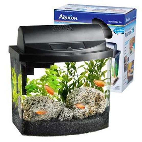 BEST GLASS AQUARIUM IN PATNA